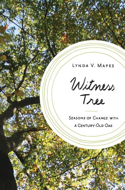 Witness Tree by Lynda Mapes
